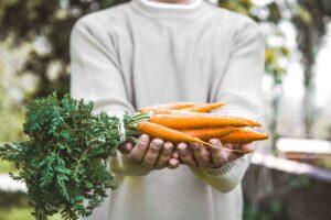 ¿Es buena la zanahoria para la vista?